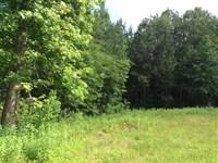 Otto Franklin Road Tract, Beaurega : Deridder : Beauregard Parish : Louisiana
