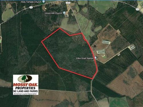 Reduced, 207 Acres of Hunting And : Autryville : Cumberland County : North Carolina