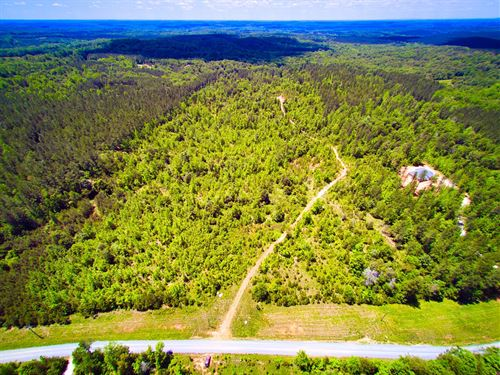 Acreage For Sale Near McConnells SC : McConnells : York County : South Carolina