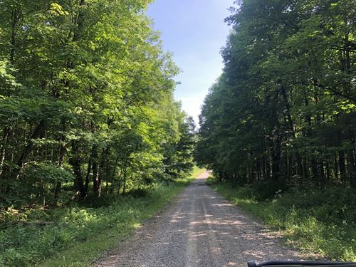 Perfect For North Country Hunters : Redfield : Oswego County : New York