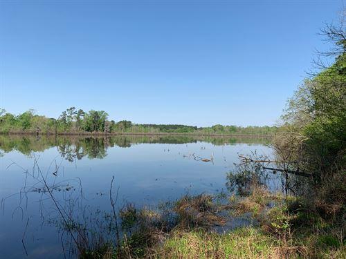 376 Acres South Of Sh 294 Via Easem : Alto : Cherokee County : Texas