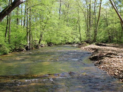 92 Gorgeous Acres With Great Creek : Bon Aqua : Hickman County : Tennessee