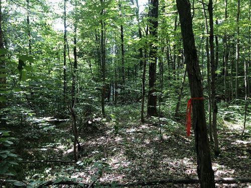 O'hara Acres : Redfield : Oswego County : New York