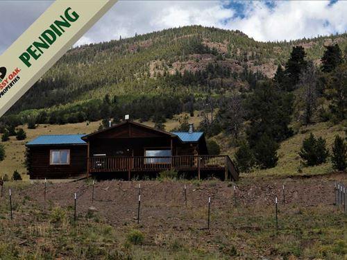Wilderness Log Cabin : Guffey : Park County : Colorado