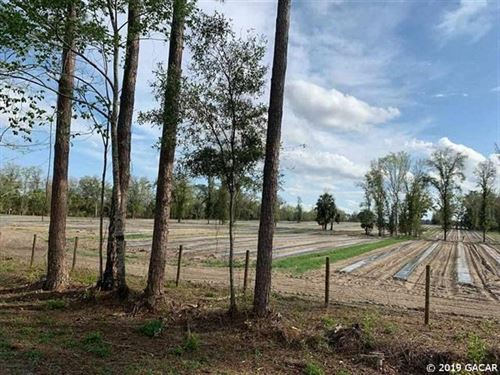 30 Acres Vacant Land, Newberry : Newberry : Alachua County : Florida