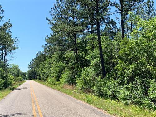 2,33 Acres McDougald Street : Geneva : Alabama