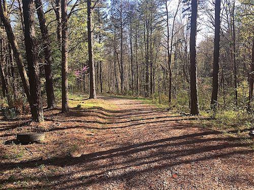 Log Pile Rd, 43 Acres : Ray : Vinton County : Ohio