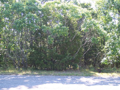 Heavily Treed Lot : Horseshoe Bend : Izard County : Arkansas