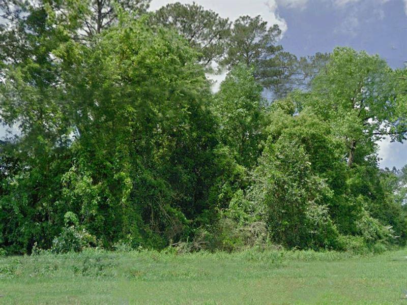 Beautiful Lot In Friendly Community : Chattahoochee : Gadsden County : Florida