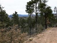 Seven Cabins Ranch : Capitan : Lincoln County : New Mexico