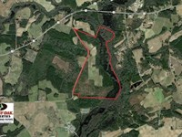 341 Acres of Timber And Farm Land : Wade : Cumberland County : North Carolina