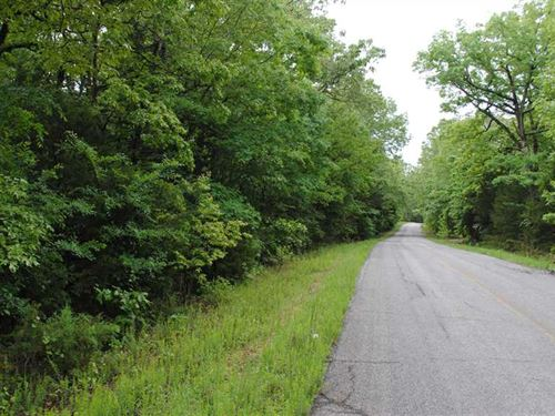 50.530 Wooded Acres Just 1/2 Mile : Flippin : Marion County : Arkansas
