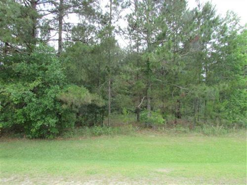 16.91 Wooded Acreage Close to Moul : Moultrie : Colquitt County : Georgia