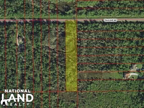 1.59 Acres in Golden Gate : Naples : Collier County : Florida