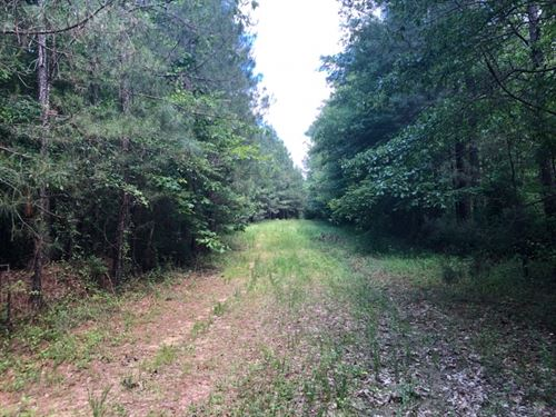 104 Acres In Rankin County In Pelah : Pelahatchie : Rankin County : Mississippi