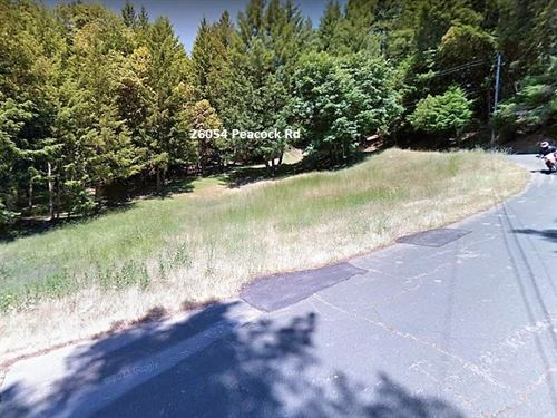 Beautiful Treed Lot-Paved-Utilities : Willits : Mendocino County : California