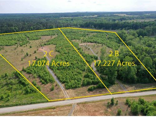 17 Acres Home Sites : Barnesville : Lamar County : Georgia