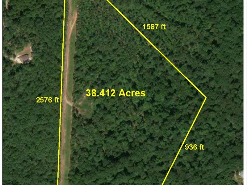 Private Wooded Estate Property : Griffin : Spalding County : Georgia