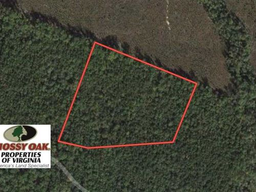 Under Contract, 8.79 of Timber : Spotsylvania : Virginia