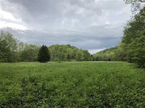 80 Acres in Camden County, Miss : Macks Creek : Camden County : Missouri