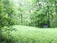 30 Acres Hunting Property, Grayso : Caneyville : Grayson County : Kentucky