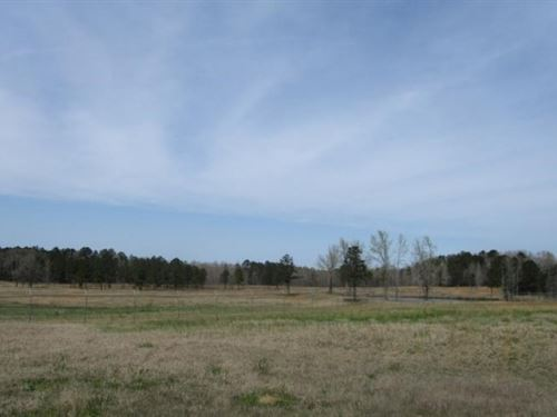 47.5 Acres In Oktibbeha County : Maben : Oktibbeha County : Mississippi