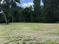 Owner Finance 9.7 Acres Spring Lake : Brooksville : Hernando County : Florida