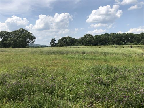 Commercial 1.5 Acres Bartow County : Cartersville : Bartow County : Georgia