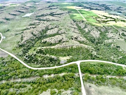 140 Acres of Excellent Hunting : Alton : Osborne County : Kansas