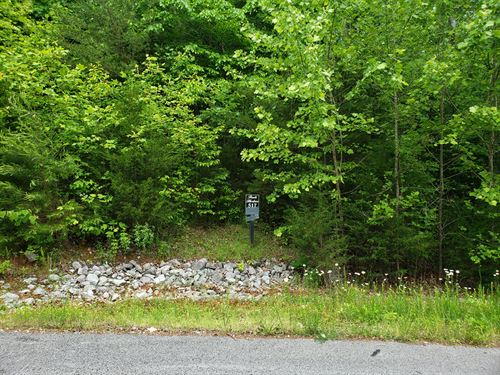 Building Lot In Rock Harbor : New Tazewell : Claiborne County : Tennessee