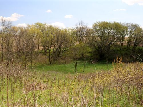5+ Acres On Beautiful Hillside : Dodgeville : Iowa County : Wisconsin