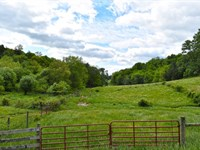 Pristine Fertile Pastureland : Floyd : Floyd County : Virginia