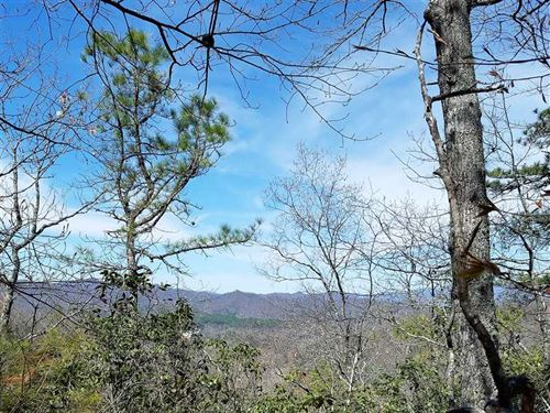 49 Wooded Acres Close to Bryson Ci : Bryson City : Swain County : North Carolina