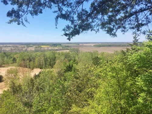 Hunting Paradise Land For Sale Yazo : Satartia : Yazoo County : Mississippi