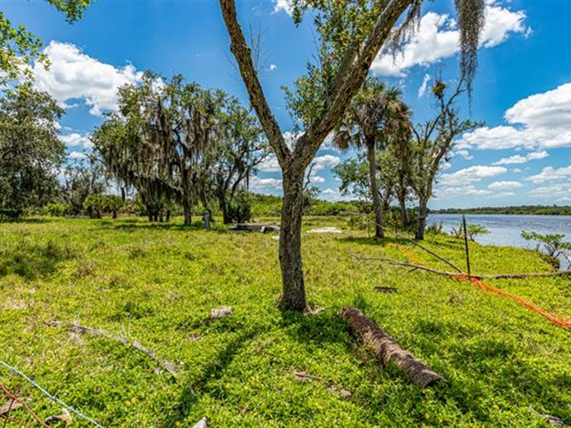 12.20 ac Grassy Land Along The : Fort Myers : Lee County : Florida