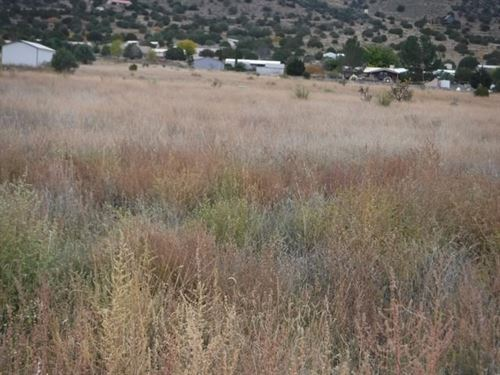Land Silver City Nm.75 Acres : Mimbres : Grant County : New Mexico
