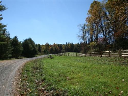 73 Acres In Carroll County, VA : Fancy Gap : Carroll County : Virginia