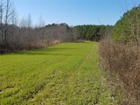 1154 Acres Preserved Tn Land : Sherwood : Franklin County : Tennessee