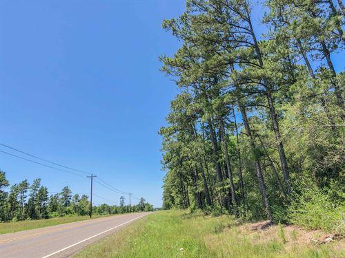 177 Acres Fm 356 Tract 2206 : Trinity : Texas