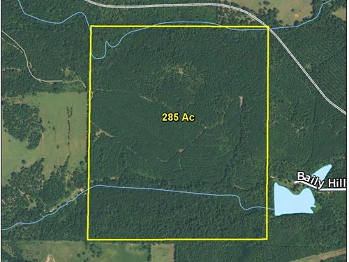 285 Ac Off Baily Hill Road Tr 1188 : Jacksonville : Cherokee County : Texas