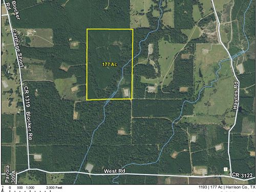 177 Ac Off West Rd Tract 1193 : Marshall : Harrison County : Texas