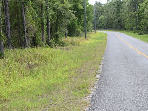 Owner Financing 3.5 Acre : Brooksville : Hernando County : Florida