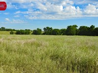 18 Acre Ranchette, Academy Isd : Temple : Bell County : Texas