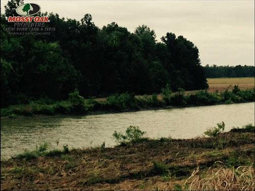 40 Acre Deer/Duck Hunting Land Gre : Paragould : Greene County : Arkansas