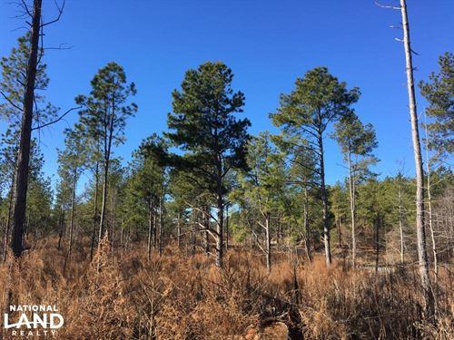 Level Country Homesite : Inman : Spartanburg County : South Carolina