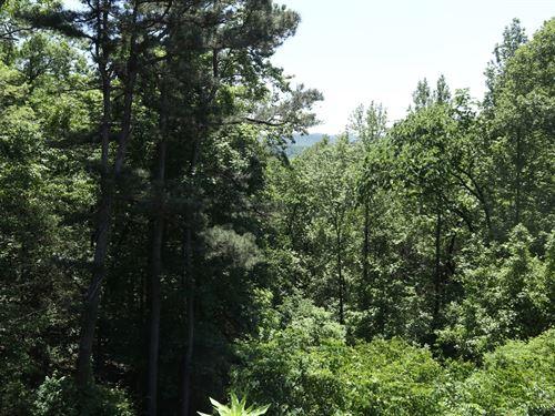 Vacant Land Calico Rock, Arkansas : Calico Rock : Izard County : Arkansas