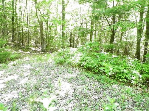 Land In Bland Co, Va, 7.57 Acres : Bland : Virginia