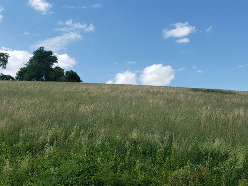 30.49 Acres Beautiful, Lush Country : North Tazewell : Tazewell County : Virginia