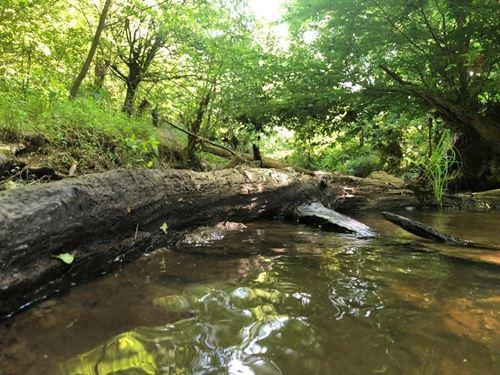 Mack's Creek : Lexington : Oglethorpe County : Georgia