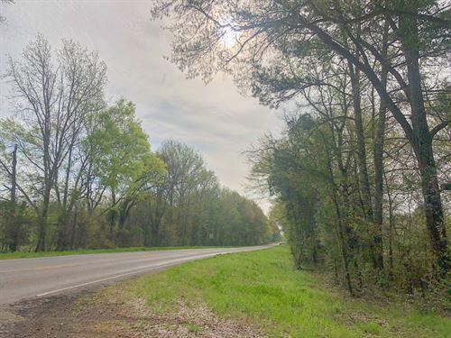 716 Acres Cr 2215 / Cr 1201 Tr 1018 : Daingerfield : Morris County : Texas